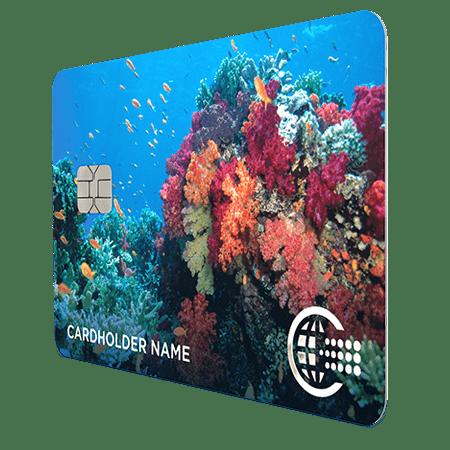 2019-09-30 Coral-Card_4-min